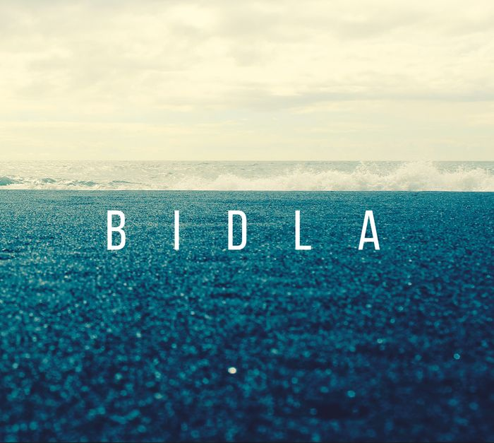 New Baros Records Release – Bidla by Agnew McAllister Duo